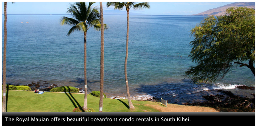Menehune Shores offers beautiful oceanfront condo rentals in North Kihei.